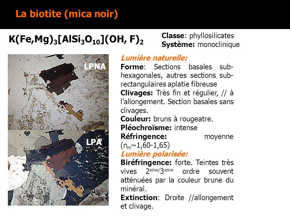 La biotite (mica noir) K(Fe,Mg)3[AlSi3O10](OH, F)2 LPNA LPA